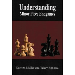 Understanding Minor Piece...